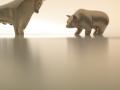 медведи и быки
